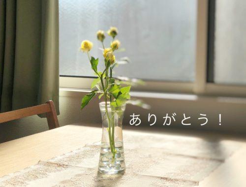 Nói cảm ơn trong văn hoá người Nhật